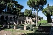 Rome-518
